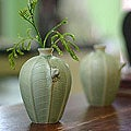 Set of 2 Handcrafted Ceramic 'Frangipani Frogs' Vases (Indonesia)