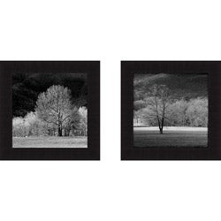Robert Jones 'Cades Trees I and II' Framed Print