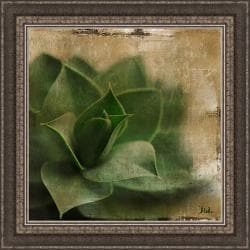 Patricia Pinto 'Succulent II' Framed Print
