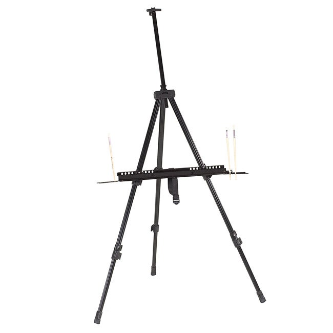 'Integra' Field and Studio Easel