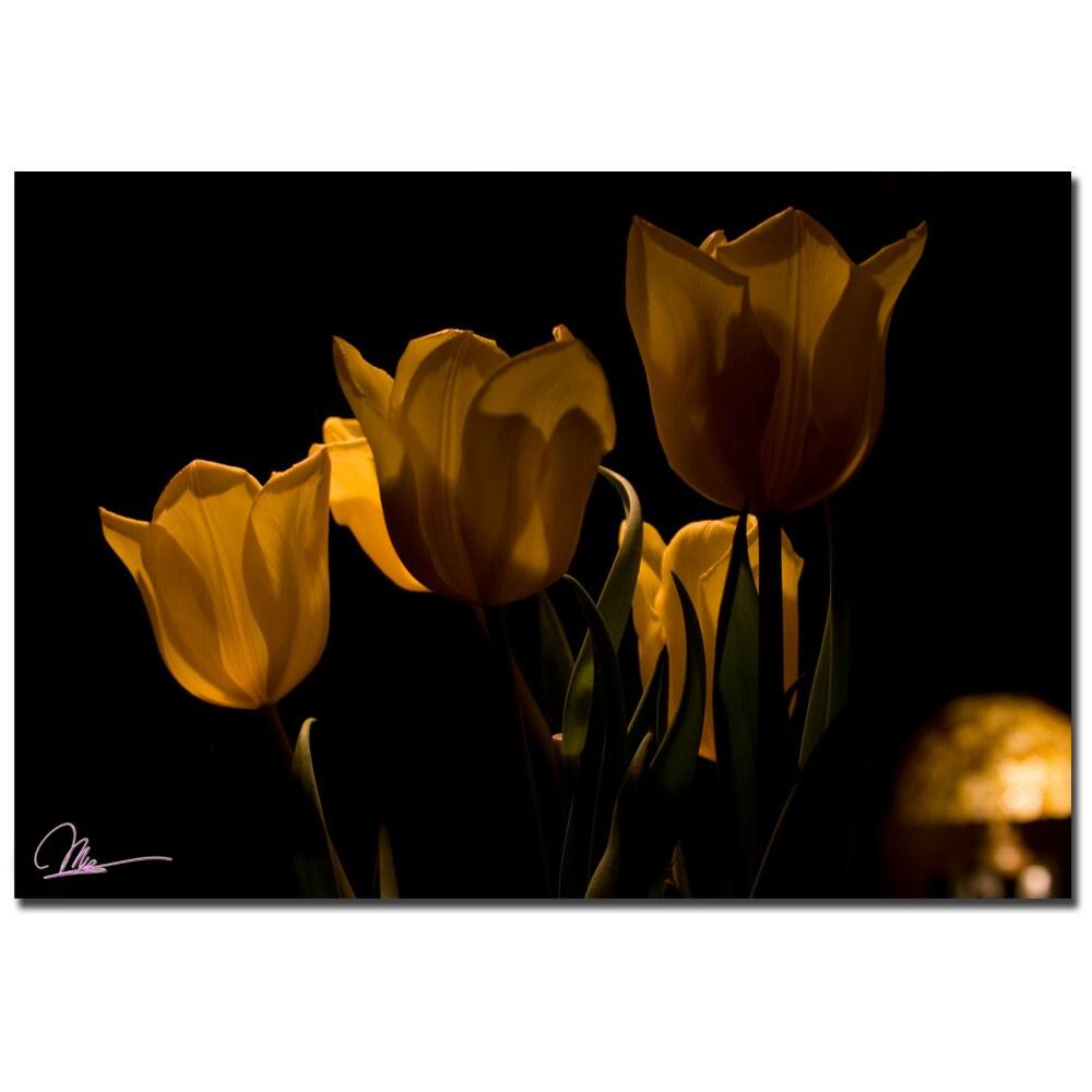 Martha Guerra 'Bouquet of Tulips' Canvas Art