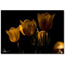 Martha Guerra 'Bouquet of Tulips' Canvas Art