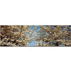 Preston, 'Floral Escape' Canvas Art