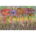 Ankan 'Colorful Trees' Gallery-wrapped Canvas Art