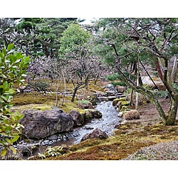 Stewart Parr 'Japan - City Gardens' Unframed Photo Print