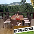 Padova Rectangular 9-piece Teak and Wicker Dining Set