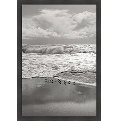 Marty Knapp 'Shorebirds, Point Reyes' Framed Print Art