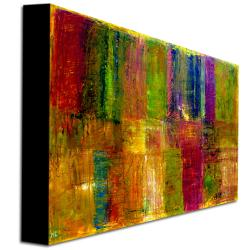 Michelle Calkins 'Color Panel Abstract' Canvas Art