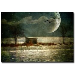 Lois Bryan 'Moonstruck' Gallery-Wrapped Canvas Art
