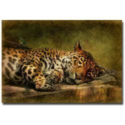 Lois Bryan 'Wake Up Sleepyhead' Gallery-Wrapped Canvas Art