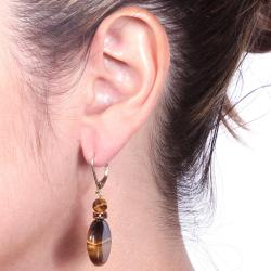 Angelina D'Andrea 14k Goldplated Tiger's Eye and Brown Crystal Earrings