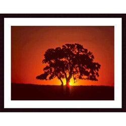 John K Nakata 'Sunset and Oak' Wood Framed Art Print