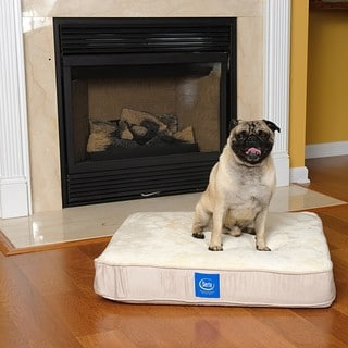 Serta True Response Small Memory Foam Pet Bed