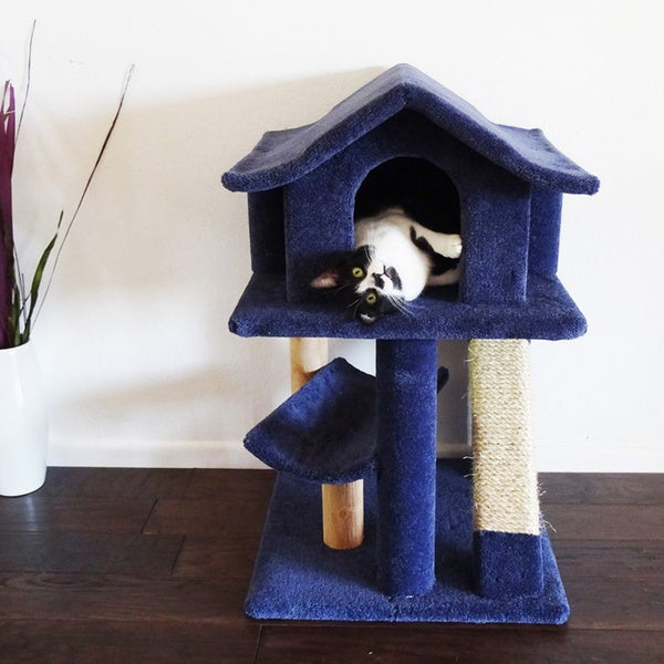 Cat Condos For Large Cats New Cat Condos Mini Cat Pagoda