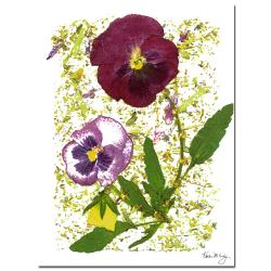 Kathie McCurdy 'Plum Pansy' Canvas Art