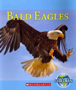 Bald Eagles (Paperback)