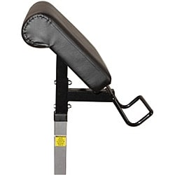 Valor Fitness EX-2 Preacher Curl Accessory