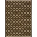Brown/Ivory Outdoor Area Rug (3'10 x 5'6)