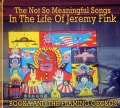 Booka and the Flaming Geckos - The Not So Meaningful Songs In The Life Of Jeremy Fink