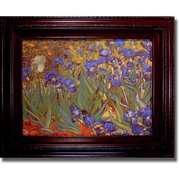 Vincent Van Gogh 'Iris Garden' Framed Canvas