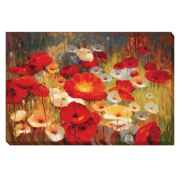 Contemporary Lucas Santini 'Meadow Poppies I' Canvas Art 14354285