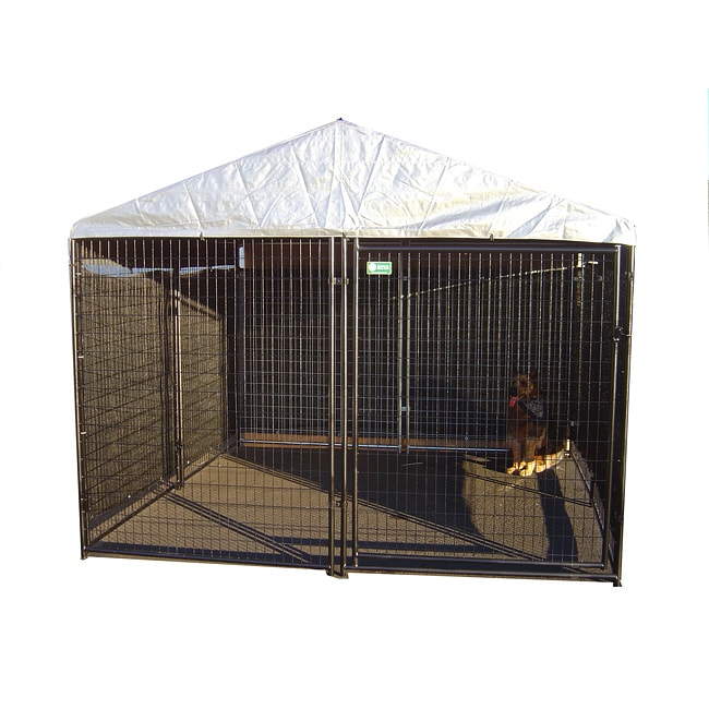 AKC Black Welded Wire Kennel (6x10x10)