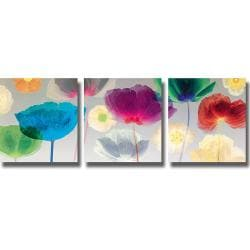 Robert Mertens 'Poppy Panorama' 3-piece Canvas Art Set