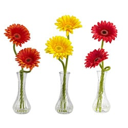 Gerber Daisy with Bud Vase (Set of 3)