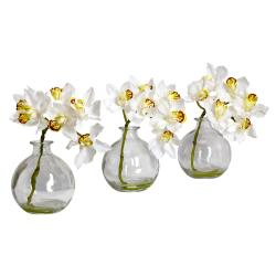 Cymbidium Bamboo Palm Orchid with Vase (Set of 3)