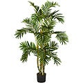 Areca 4-foot Silk Tree