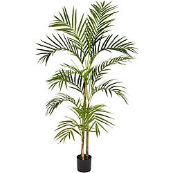Areca Palm 4-foot Silk Tree