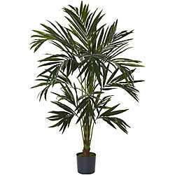 Kentia 6-foot Silk Tree