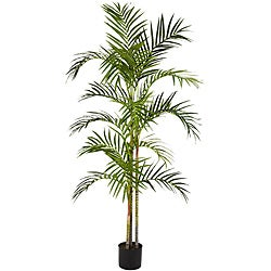 Areca Palm 5-foot Silk Tree