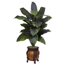 Giant Spathyfillum with Decorative Vase