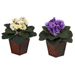 African Violet Silk Plant with Vase (Set of 2)