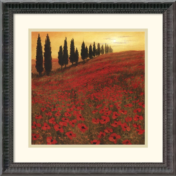 Steve Thoms 'Poppies' Framed Art Print