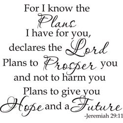 Design on Style 'Jeremiah 29:11 For I Know The Plans I Have For You Declares The Lord' Vinyl Art Quote