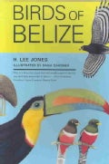 Birds of Belize (Paperback)