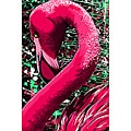 Maxwell Dickson 'Pink Flamingo' Canvas Wall Art