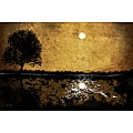 Maxwell Dickson 'Moonlight' Canvas Wall Art