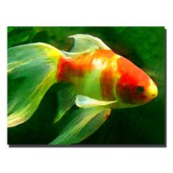 Amy Vangsgard 'Gold Fish' Canvas Art