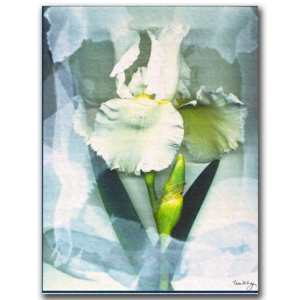 Kathie McCurdy 'Sheer White Iris' Canvas Art