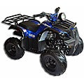 Trailrover Blue 125cc Automatic Transmission ATV