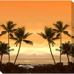 Gallery Direct 'Palm Beach' Oversized Gallery Wrapped Canvas Art