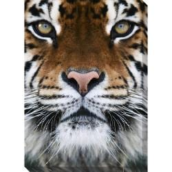 Tiger Oversized Gallery Wrapped Canvas