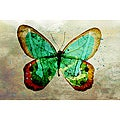 Maxwell Dickson 'Butterfly' Wall Decor Canvas Art