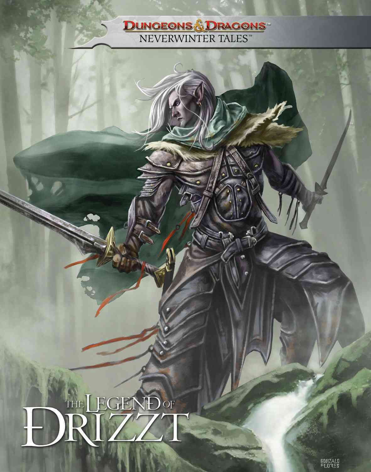 Dungeons & Dragons: The Legend of Drizzt: Neverwinter Tales (Hardcover)