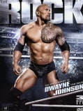 WWE The Rock (DVD)