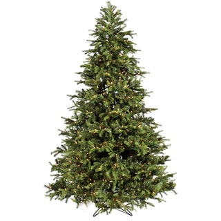 Good Tidings 700 Clear Light Brisbane Christmas Tree