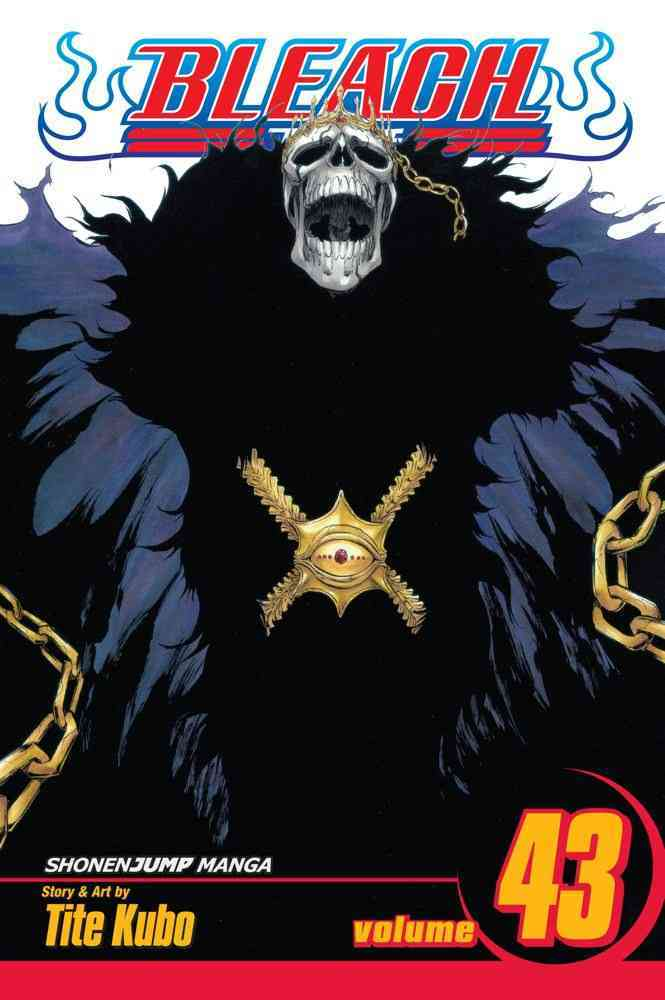 Bleach 43: Kingdom of Hollows (Paperback)